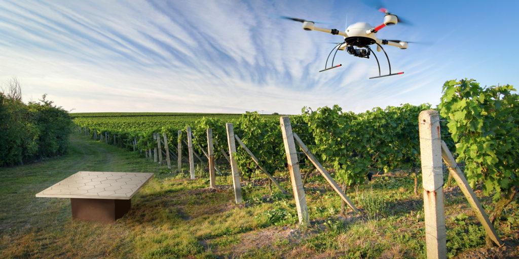 О перспективах развития дронов в сельском хозяйстве