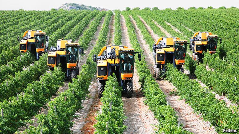 J'son & Partners Consulting о точном земледелии: мир переходит на цифровое сельское хозяйство